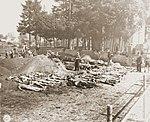 German civilians exhume mass grave at Schwarzenfeld 2.jpg