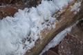 Gersfeld Kl Nalle Hairice Wood Fagus b.png