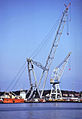 Giant floating crane.jpg
