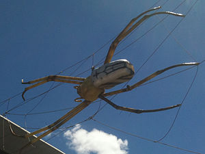 Museum of Tropical Queensland - Spiderella - The giant spider on the front of the museum