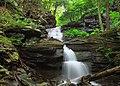 Gipson Falls (Entire Drop) (9226966530).jpg