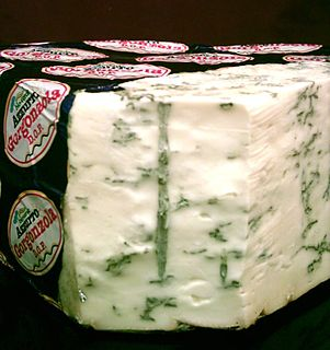 <i>Penicillium glaucum</i> Mold used in the making of some blue cheeses