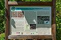 Granitporphyr von Thal Heiligenstein 05.jpg