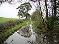 Green Lane, Nook - geograph.org.uk - 301871.jpg