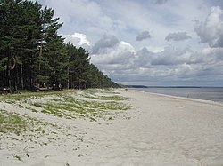 Gulf of Riga-Beach.JPG