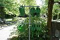Hückeswagen - Am Kamp - Friedhof 27 ies.jpg