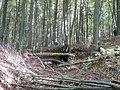 Hütte im Warndtwald - panoramio.jpg