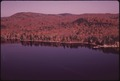 HARDWOOD TREES SHOW THEIR FALL COLOR AT SEVENTH LAKE, IN THE ADIRONDACK FOREST PRESERVE - NARA - 554648.tif