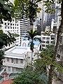 HK ML 香港半山區 Mid-levels 上亞厘畢道 Upper Albert Road flora view Lower Albert Road church April 2020 SS2 01.jpg