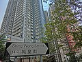 HK Sheung Wan 士丹頓街 Staunton Street 城皇街 Shing Wong Street name sign view CentreStage Dec-2013 tree Hollywood Road Terrace.JPG