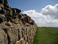 Hadrian's Wall in May 2009.jpg