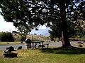 Hagelstein Park picnic spot.JPG