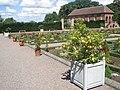 Hanbury Hall formal garden - geograph.org.uk - 500246.jpg