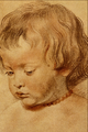 Head of a Boy - Sir Peter Paul Rubens.png