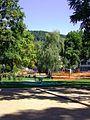 Heidelberg Stadtteil Bergheim BILD1017.jpg