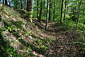 Heidenschloss-Weiherberg-DSC 6262.jpg