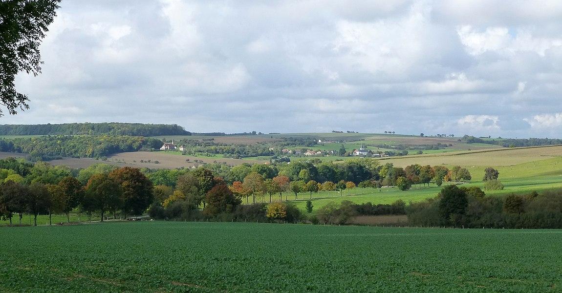 A gauche la France, Heining-lès-Bouzonville (Moselle); à droite la Sarre avec l'église à bulbe de Leidingen. Vue depuis la frontière.