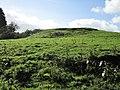 Hewelsfield Motte Castle from NW.jpg