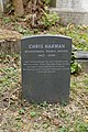 Highgate Cemetery - East - Chris Harman 01.jpg