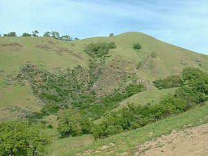 California interior chaparral and woodlands - Hillside in Sunol Regional Wilderness, April 2004
