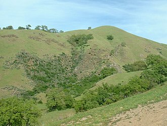 California interior chaparral and woodlands - Hillside in Sunol Regional Wilderness, April 2004