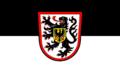 Hissflagge der Stadt Landau in der Pfalz.png