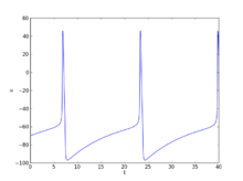 Action potential propagation simulation dating 2