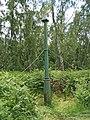 Holme Fen, Cambridgeshire (48092246846).jpg