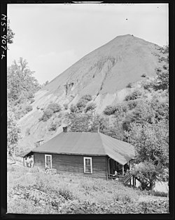 Home of Negro miner living in company housing project with slag pole in rear. Adams, Rowe & Norman Inc., Porter Mine... - NARA - 540604.jpg