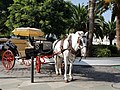 Horse and cart in Mijas.jpg