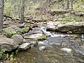 Horton Creek Trail, Payson, Arizona - panoramio (44).jpg