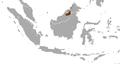 Hose's Palm Civet area.png