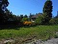 Hulyaihorodok, Cherkas'ka oblast, Ukraine, 20740 - panoramio.jpg