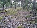 Hummelmoraberget, klapperstensvallar, 2015a.jpg