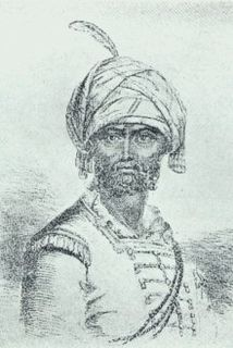Hyder Ali Sultan and de facto ruler of the Kingdom of Mysore