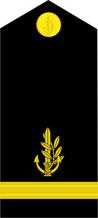 IDF-Navy-2