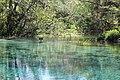 Ichetucknee Springs State Park Head Spring 4.jpg