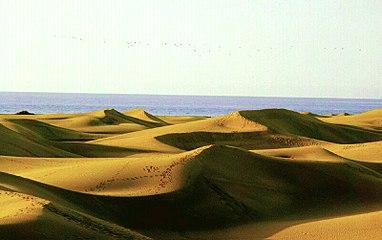 Image-Maspalomas dunes DAH2002-005.jpg