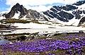 Image 7 Rila lakes - Bliznaka and Haramiata Peak.jpg