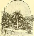 In brightest Asia (1891) (14767644555).jpg