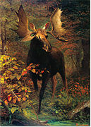 In the forest-Albert Bierstadt.jpg