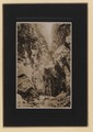 Indian Head Canyon, Lynn Valley, British Columbia (HS85-10-42222) original.tif