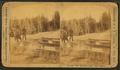 Ingersoll Spring (Bob), by Ingersoll, T. W. (Truman Ward), 1862-1922.png