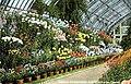 Interior Conservatory, Washington Park (NBY 7619).jpg