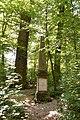 Irrhain Nürnberg 20200612 011.jpg