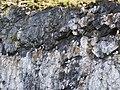 Islando 2013-07-24 11.18.88.jpg