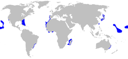Isurus paucus distmap.png
