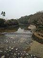 Isuzugawa River from Ujibashi Bridge.jpg