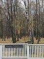 Izmaylovskaya, view of Izmailovsky park (Измайловская, вид на Измайловский парк) (5145119467).jpg