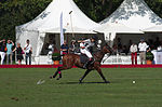 Jaeger-LeCoultre Polo Masters 2013 - 31082013 - Final match Poloyou vs Lynx Energy 51.jpg
